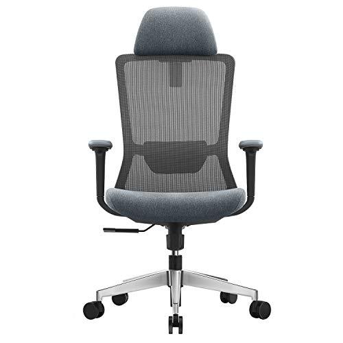EGOSI SGS-Certified Big High Back Mesh Ergonomic Executive Swivel Office Chair,Adjustable Lumbar 4D Armrest Desk Chair,Thick Seat Cushion Gel Memory Foam Computer Chairs