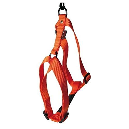 Harnais confort Tour de cou 27-43 cm orange