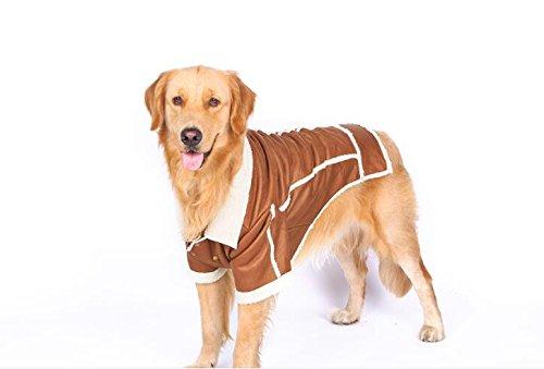 Labrador automne et hiver vêtements vêtements pour chien Grand Chien Vêtements Alaska