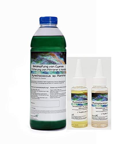 Plankton24 Zuchtansatz - 1 Liter Synechococcus + 100 ml Dünger