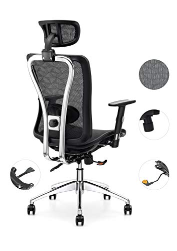 Cedric Office Chair,Breathable Mesh Computer Chair with Ergonomic Adjustable Lumbar Support, Black...