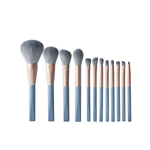 AIZIJI Makeup borstel set, draagbare losse poeder borstel oogschaduw borstel hoogglans borstel plastic handvat 12