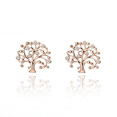Orecchini per donne, in argento con toni di oro rosa, per ragazze alla moda, orecchini a perno a forma di albero della vita, con zirconi cubici e Rame, colore: Rose Gold Tree of Life, cod. EH05609