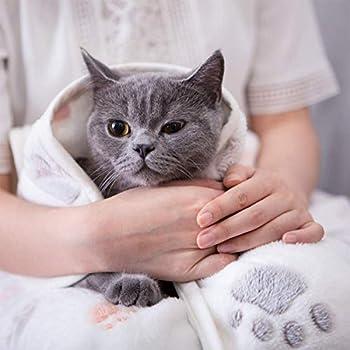 JieGuanG Couverture en duvet Beige pour animal domestique domestique Chats et chiens