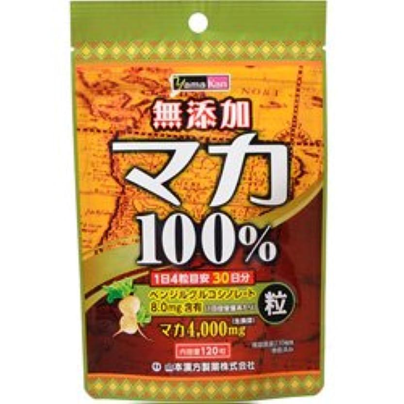 定期的傘間に合わせ【山本漢方製薬】マカ粒 120粒 ×20個セット