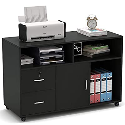 Tribesigns Wood File Cabinet, 2 Drawer Storage Printer Stand, Mobile Lateral Filing Cabinet with Locks and Wheels, Open Storage Shelves for Study, Home Office