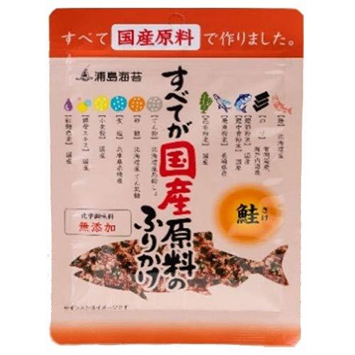 日本海水 浦島海苔 すべてが国産原料のふりかけ 鮭 28g×10袋入