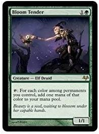 Magic: free the Gathering - Tender National products Eventide Bloom