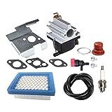 MISHITI Carburador 640020 + Kit de Ajuste de Filtro de Aire para cortadora de césped con Motor Tecumseh