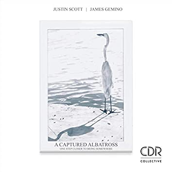 A Captured Albatross: One Step Closer to Being Somewhere