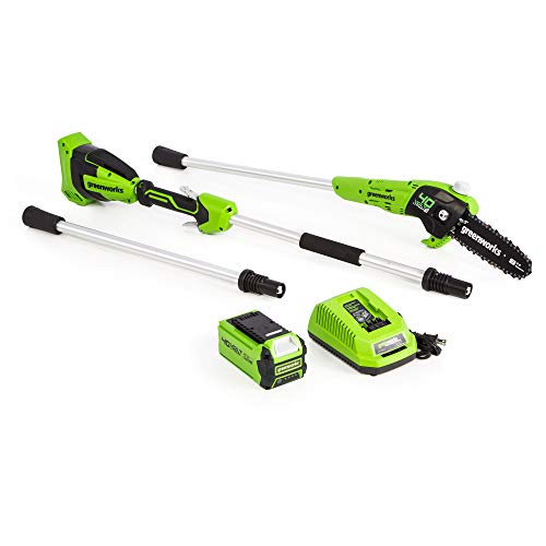 Greenworks 40V 8-Inch Cordless Polesaw, 2.0Ah Battery and Charger Included, PS40B210