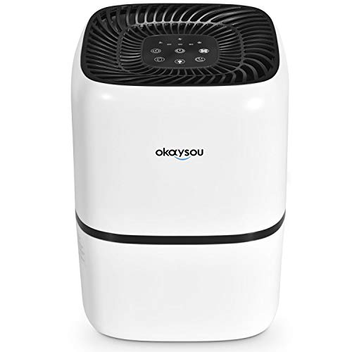 Okaysou Medical Grade Air Purifier for Home Pets, Smokers, Odors, Ultra-Duo True HEPA H13 Filter, 24dB Air Cleaner for Bedroom, Removes Pet Hair Dust Pollen Smoke VOCs,288 Sq. Ft. 5-Yr Warranty, White