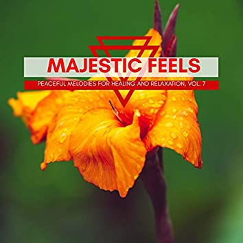 Majestic Feels - Peaceful Melodies For Healing And Relaxation, Vol. 7