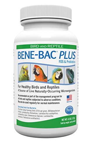 Bene Bac Plus Bird Reptile - Pulver 127 g