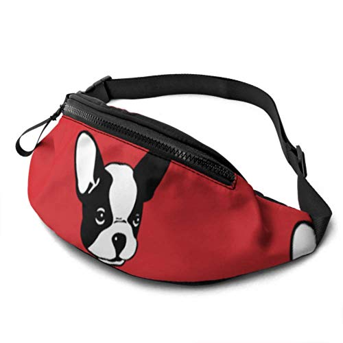 QIYI Waist Bags for Kids Cute French Bulldog Fanny Waist Pack with Headphone Jack and Adjustable Straps Adjustable Waist Pack for Travel Sports Hiking