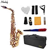 Decdeal AS-100 EB Alto Saxophone Sax Brass Lacquered Gold 802 Key Type Woodwind Instrument with Carrying Case Reed Cleaning Brush Cloth Gloves Straps