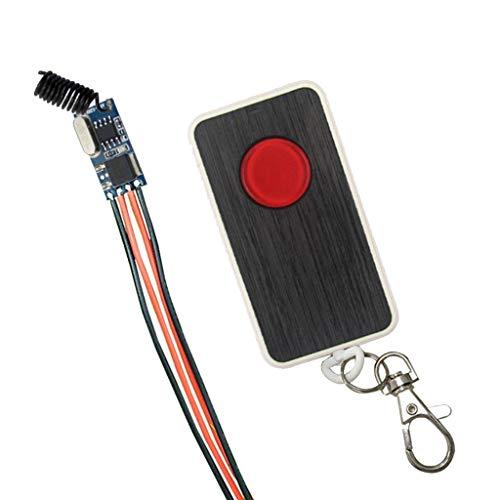 Homyl Récepteur Miniature de Commutateur Micro + Télécommande - Panneau 1