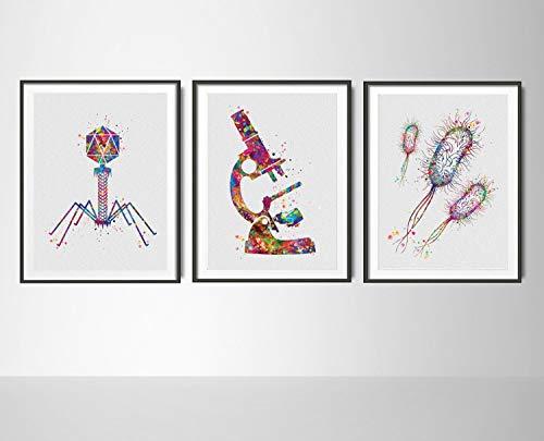 Mikrobiologie Set mit 3 Aquarell-Drucken Mikrobiologiker Bakteriophage Virus Mikroskop Student Student Graduation Labor Zurück zur Schule -78
