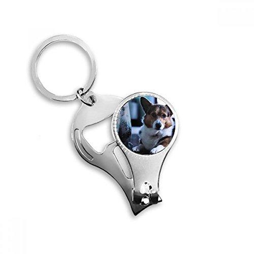 Corgi perro de mascota animal imagen solitaria clave cadena anillo Toe Nail Clipper cortador Tijeras...
