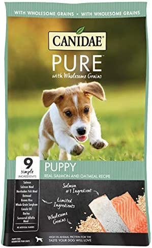 Canidae Pure with Wholesome Grains Limited Ingredient Dry Puppy Food Salmon and Oatmeal 24lbs product image