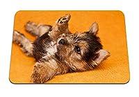 26cmx21cm マウスパッド (子犬は遊び心のある赤ちゃん) パターンカスタムの マウスパッド