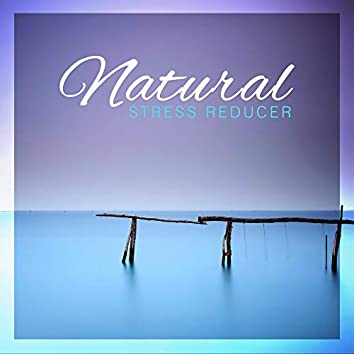 Natural Stress Reducer: Relaxing Music to Relieve Stress, Tension, Anxiety and Fear
