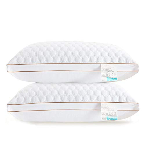 beegod Pillows for Sleeping, Quality Bed Pillows Super Soft & Comfortable Relief Migraine & Neck Pain Pillow Good for Side and Back Sleeper (2 Pack-16 x 24 inch)