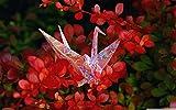 Desconocido 1000 Piezas Jigsaw Piezas Rompecabezas de Origami Mil Grullas De Papel Regalo para niño Casual de Arte