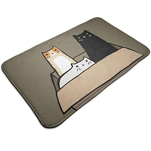 Cats in a Box Absorbent Super Bath mat Front Door mat Non-Slip Floor mats Welcome mats Kitchen Rugs Cozy Soft Carpet 19.5' x 31.5'