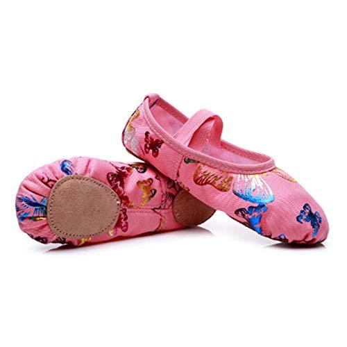 VCIXXVCE Zapatillas de Ballet para Niñas Zapatillas de Ballet de Lona Rosas(Niño pequeño/Niño Grande),26 EU