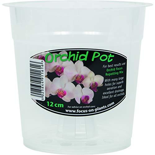 Clear Orchid Pot 12cm