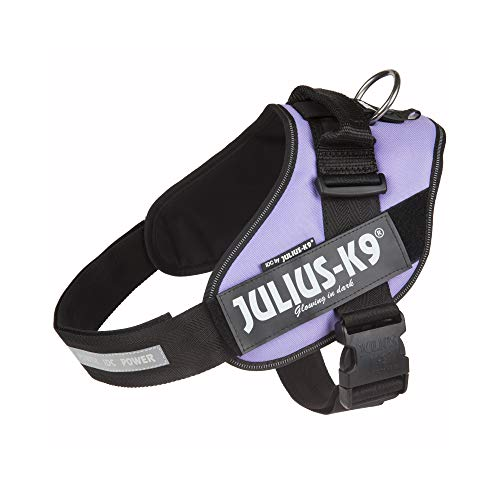 Julius-K9, 16IDC-PR-1, IDC Powerharness, dog harness, Size: 1, Purple
