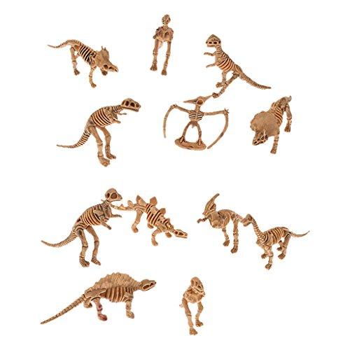 12pcs Fósiles de Dinosaurios para Niños Juguete Educativo