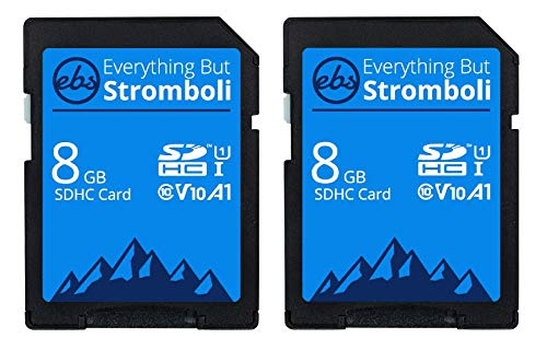Everything But Stromboli 8GB SD Card (2 Pack) Speed Class 10 UHS-1 U1 C10 8G SDHC Memory Cards for Compatible Digital Camera, Computer, Trail Cameras