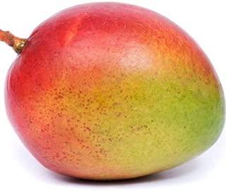 mango beachwood candle