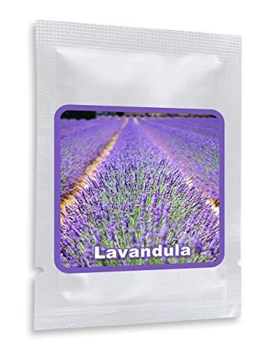 Lavanda 150 semillas - Lavandula angustifolia - planta de jardín muy popular con aroma aromático