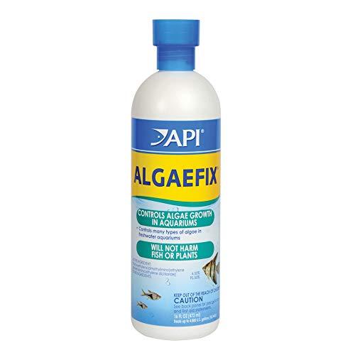 ALGAEFIX Algae Control Solution