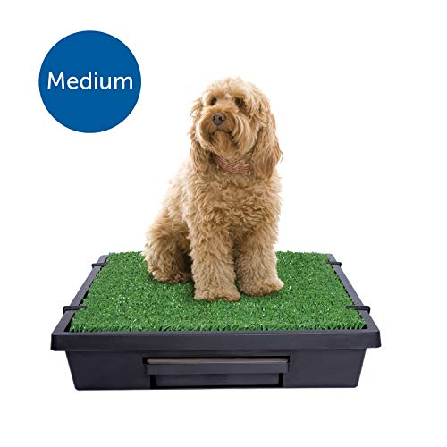 Alternative to Puppy Pad