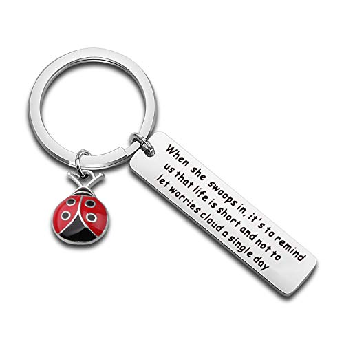 WUSUANED Good Luck Ladybug Keychain When She Swoops in It Remind Us Not Be Let Worries Cloud A Single Day Ladybug Lover Gift (When she swoops in Ladybug Keychain)