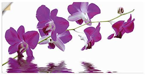 Artland Wandbild selbstklebend Vinylfolie 60x30 cm Wanddeko Wandtattoo Natur Botanik Blumen Blüten Orchideen Asien Modern J5LX