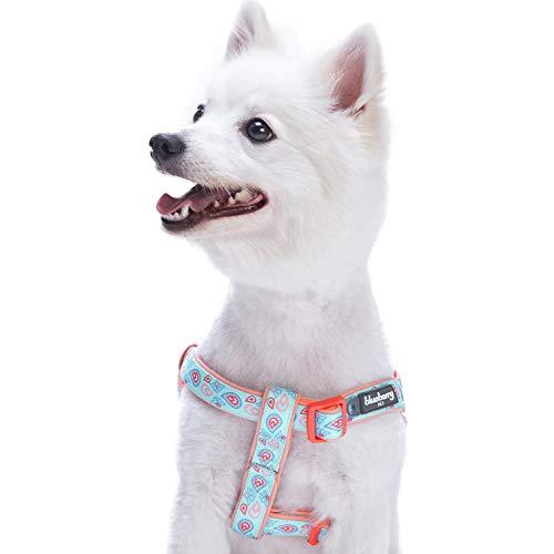 Blueberry Pet Hundegeschirr, mit blumigem Paisley-Druck, verstellbar, mit weichem Neopren gepolstert, passendes Halsband und Leine separat erhältlich