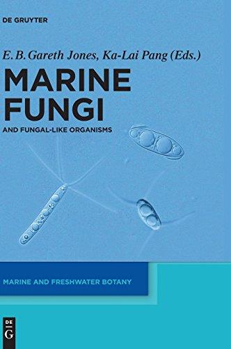 Marine Fungiand Fungal-like Organisms (Marine and Freshwater Botany)