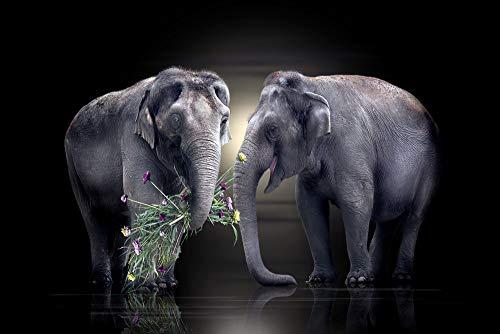 LIZELUO Mesa Plegable para Ordenador portátil Elefante Dando Flores Portátil Plegable Mesa 60x40cm