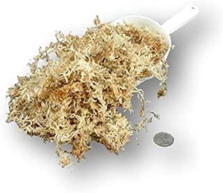 aaa new zealand sphagnum moss