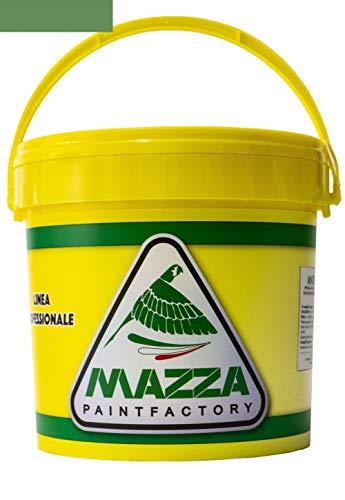 COLORIFICIO MAZZA Guaina Liquida Impermeabilizzante Monocomponente Colorata Pedonabile All'Acqua lt 5 lt 14 (5 Litri, Verde)