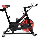 ANCHEER Stationary Bike, 40 LBS Flywheel Belt...