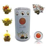 TFTea flores de té blanco - 6 unidades de primera calidad (48 g, 3 variaciones, para 18 infusiones)