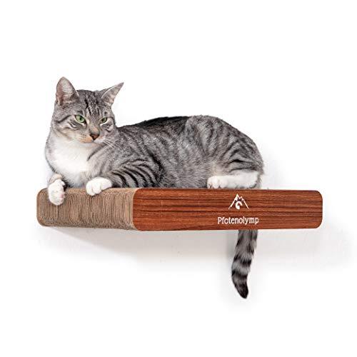 Pfotenolymp® Wandkratzbrett / Kratzbrett / Kratzmatte Katze – Wandliege mit Wandbefestigung- Kratzpappe / Katzenkratzbrett / Wandbrett 44 x 29 cm