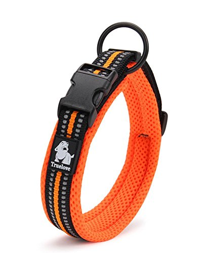 Gepolstertes Hundehalsband von Vivi Bear, 3M, mit reflektierenden Nachtsicht-Streifen, weiches atmungsaktives Material, fluoreszierend, einstellbarer Sicherheitskragen für kleine / mittlere / große Hunde, einfaches Schnallendesign, in Orange, in 8 Größen