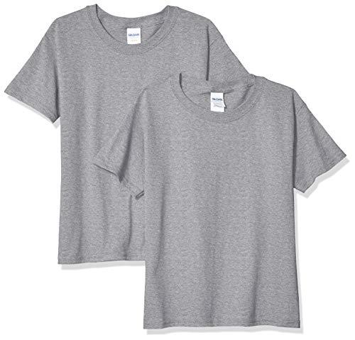 Gildan unisex child Heavy Cotton Youth T-shirt, 2-pack T Shirt, Sport Gray, X-Large US